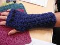 blog Sue's glove
