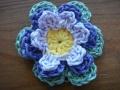 blog liz flower