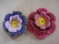 blog sarah flowers