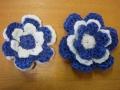blog sue flowers